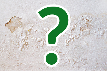 Croft Preservation - Quiz: Which type of damp problem is affecting my home?