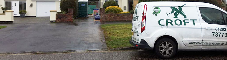 damp treatment experts