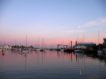 we cover Lymington
