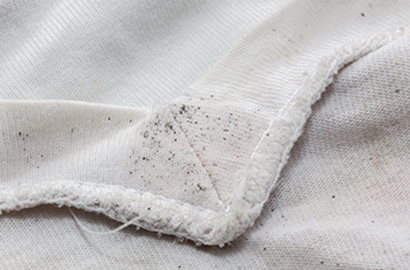 Croft Preservation - How to get rid of mould on clothes