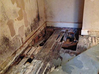 Wet Rot treatment Dorchester